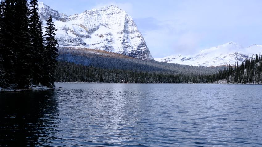 雪景色も素晴らしいレイクオハラ、神秘的な風景を求めて!!_d0112928_14112951.jpg