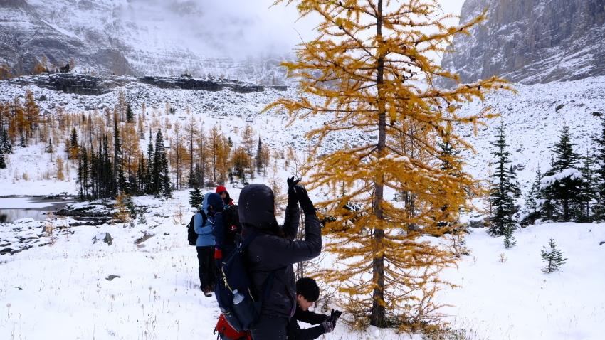 雪景色も素晴らしいレイクオハラ、神秘的な風景を求めて!!_d0112928_14231907.jpg