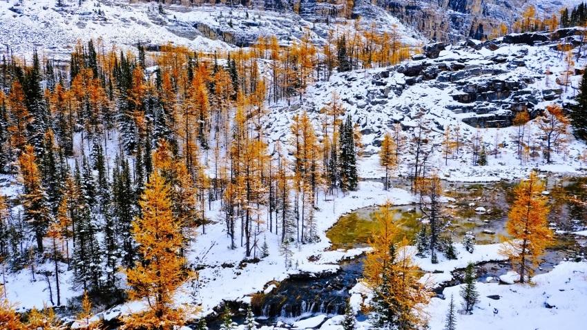 雪景色も素晴らしいレイクオハラ、神秘的な風景を求めて!!_d0112928_14302427.jpg