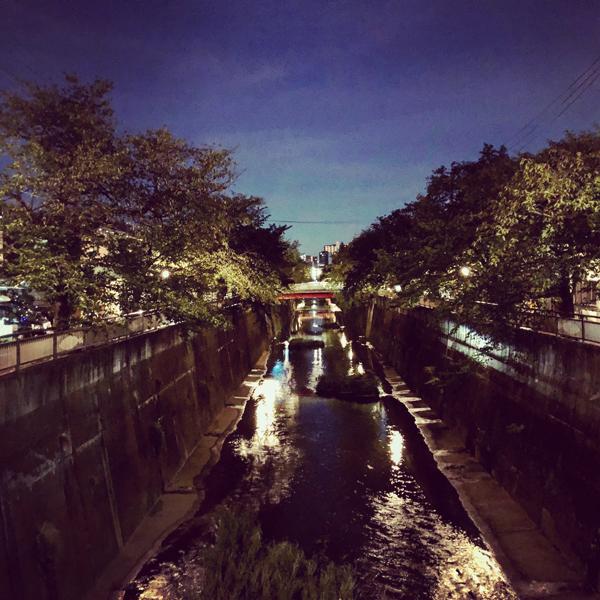 板橋区中板橋 / iPhone 8_c0334533_01070503.jpg