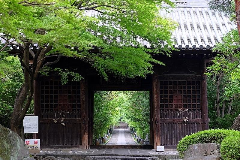 山門と参道_b0314043_09021026.jpg