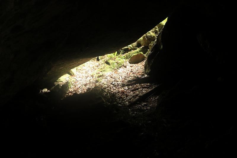 胎内くぐりで出会ったコウモリ_c0155950_19560010.jpg