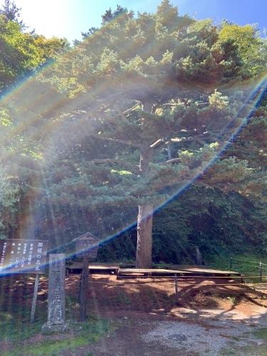 のんびり那須と大急ぎ日光+光がキラキラ_b0307951_22593483.jpg