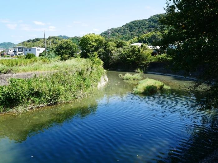 コスモス咲く里山を歩く  2019-10-09 00:00  _b0093754_18001400.jpg