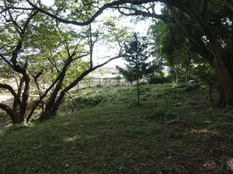 草と格闘の連続・・・うみべの森_c0108460_17383481.jpg
