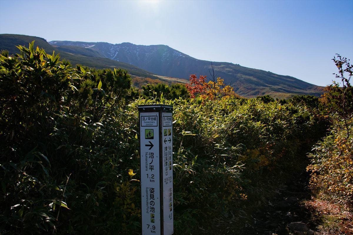 紅葉を愛でる~愛山渓温泉から当麻乗越まで~_b0281366_10513612.jpg