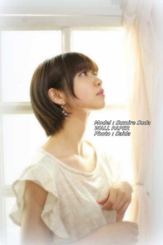 須田スミレ ~Pinoco&Daisy(東京) / WALL PAPER_f0367980_12361653.jpg