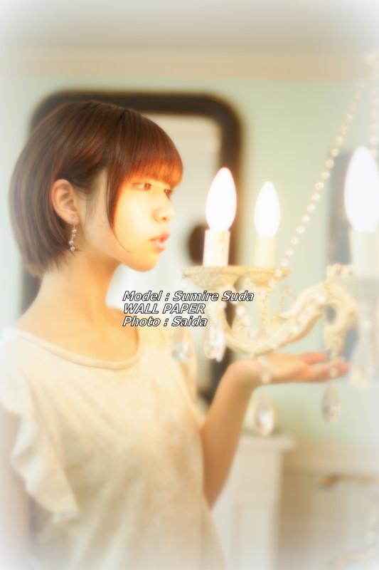 須田スミレ ~Pinoco&Daisy(東京) / WALL PAPER_f0367980_12392560.jpg