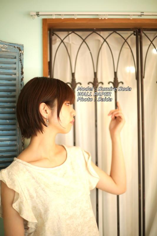 須田スミレ ~Pinoco&Daisy(東京) / WALL PAPER_f0367980_12403751.jpg