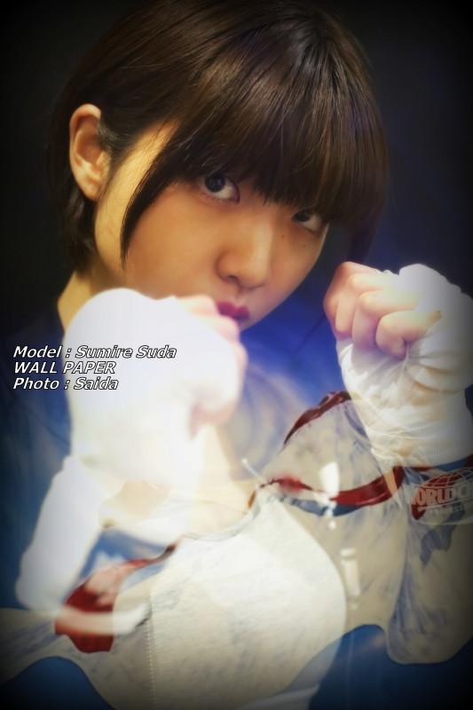 須田スミレ ~Pinoco&Daisy(東京) / WALL PAPER_f0367980_12445745.jpg