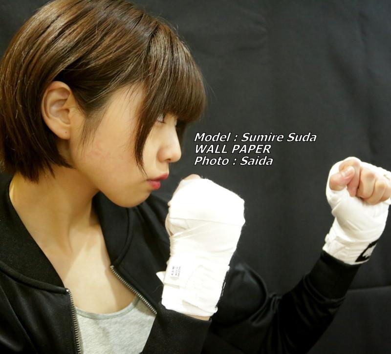 須田スミレ ~Pinoco&Daisy(東京) / WALL PAPER_f0367980_12453510.jpg
