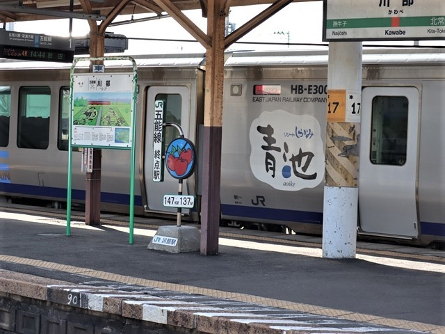 藤田八束の鉄道写真@青森県の鉄道五能線、日本海をはしるリゾート列車「しらかみ」と川辺駅・・・人生いろいろ_d0181492_15433292.jpg