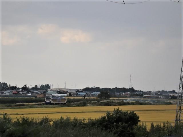 藤田八束の鉄道写真@東北のリゾート列車「しらかみ」五能線を走る、リンゴ畑と岩木山、そして「しらかみ」・・・国会論争に期待_d0181492_16060743.jpg