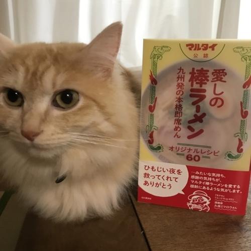 『愛しの棒ラーメン』オリジナルレシピ60ができあがりました!_d0122797_20323647.jpg