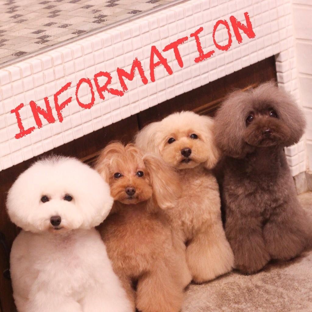 ☆ Informaition ☆_d0060413_10361328.jpg