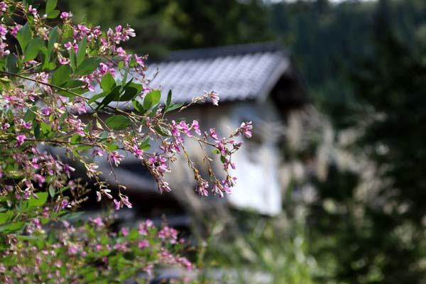 花背の初秋_e0048413_22282635.jpg