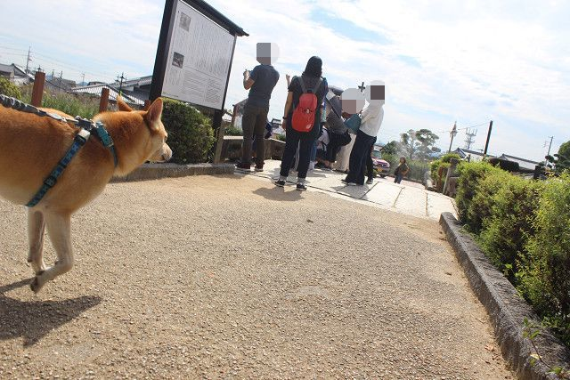 福崎へ妖怪を見に_e0371017_00240645.jpg
