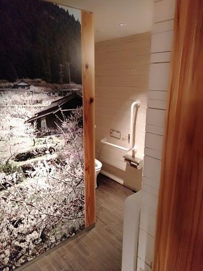 一つ一つ違うトイレ_c0162128_20180219.jpg