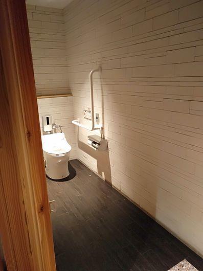 一つ一つ違うトイレ_c0162128_20180224.jpg