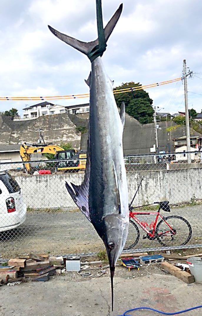 小名浜からGOOD SHOT_f0009039_09452684.jpg