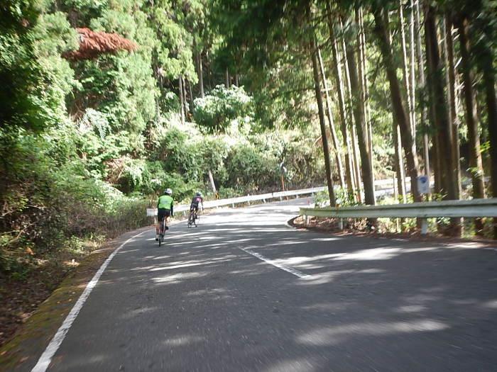 金剛トンネル~ヤムヤム~どんづる峯 コース_a0386742_09190360.jpg