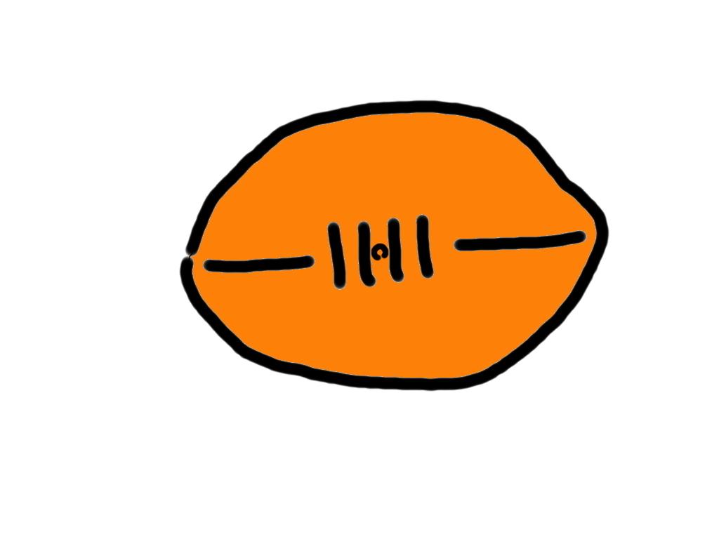 ラグビーボールについての、どーだっていい話題(ワールドカップ便乗企画)_d0027243_11365566.jpg