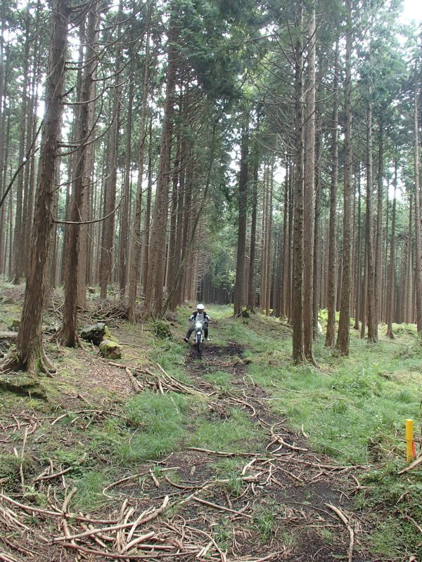 裾野・南部町方面遠征ツーリング秋の陣_f0119755_10083059.jpg