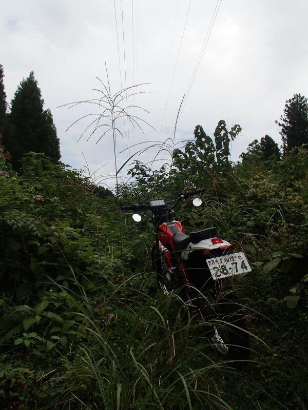 裾野・南部町方面遠征ツーリング秋の陣_f0119755_10083150.jpg