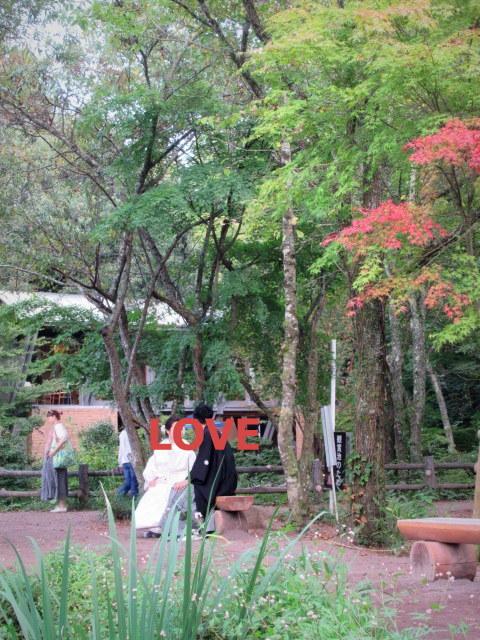 2019・軽井沢紅葉速報① * 少しずつ色づき始めた雲場池♪_f0236260_19504529.jpg