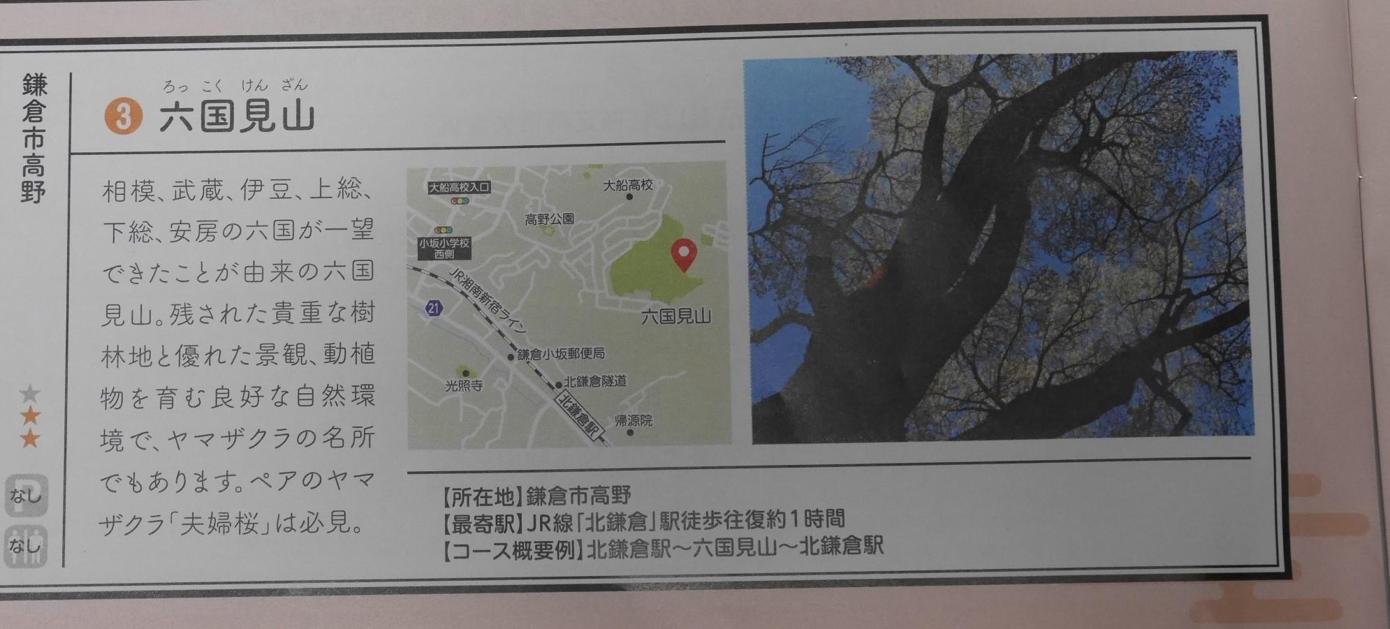 六国見山が神奈川県のパワースポットに9・20_c0014967_21323449.jpg