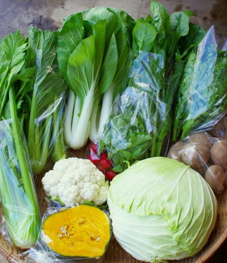 今週の野菜セット(10/1~10/5着)_c0110869_13192476.jpg
