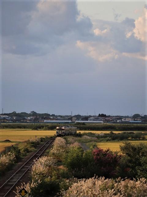 藤田八束の鉄道写真@秋深まる素敵な五能線、ローカル列車から若者たちの声が聞こえてくる_d0181492_22382480.jpg