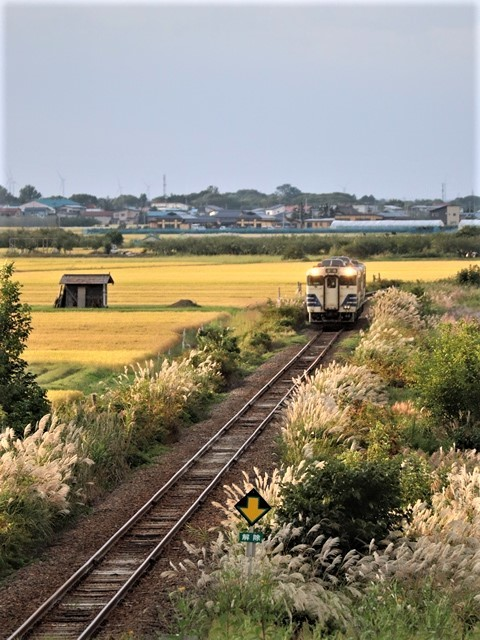 藤田八束の鉄道写真@秋深まる素敵な五能線、ローカル列車から若者たちの声が聞こえてくる_d0181492_22383449.jpg
