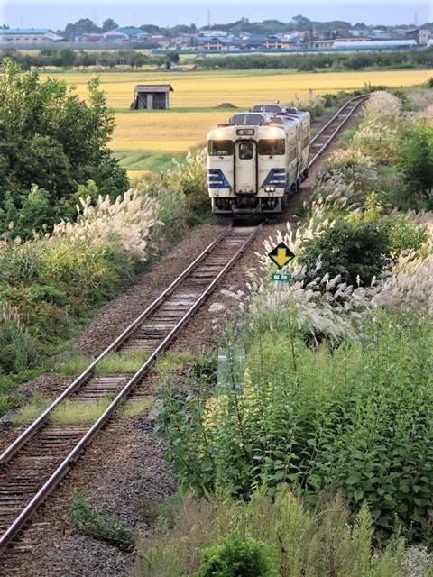 藤田八束の鉄道写真@秋深まる素敵な五能線、ローカル列車から若者たちの声が聞こえてくる_d0181492_22384568.jpg