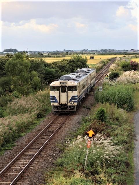 藤田八束の鉄道写真@秋深まる素敵な五能線、ローカル列車から若者たちの声が聞こえてくる_d0181492_22385327.jpg