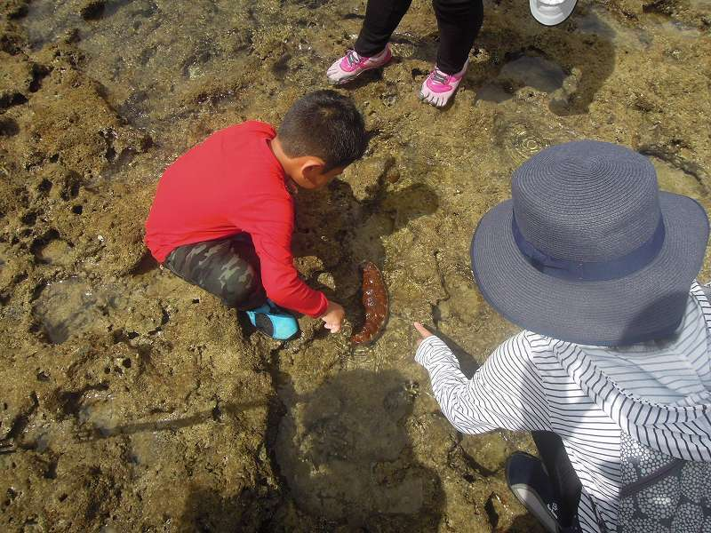第3回 くんじゃん山学校 「海の畑」イノーを歩く!_f0121321_13434364.jpg