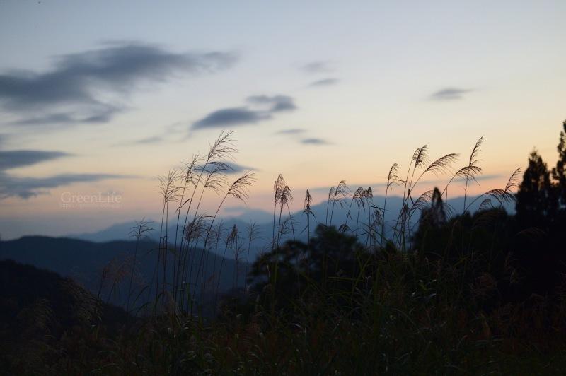 雲上の楽園へ_f0321522_10231436.jpg