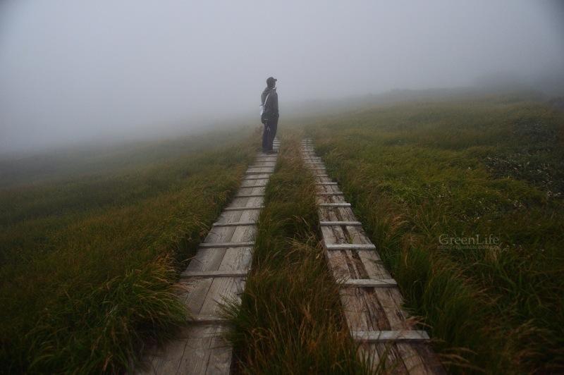雲上の楽園へ_f0321522_11574768.jpg