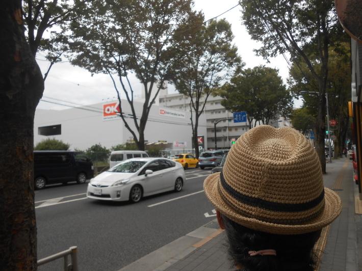 野菜のかき揚げ蕎麦とオーケーストア開店_a0095931_20463489.jpg