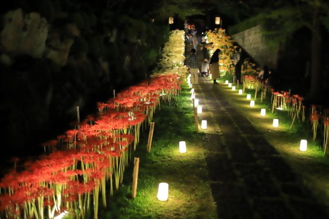 【西方寺】ライトアップ_f0348831_06525242.jpg