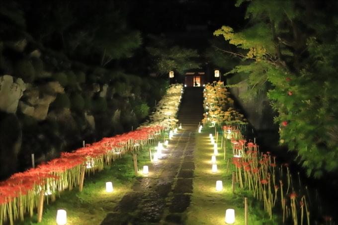 【西方寺】ライトアップ_f0348831_06525927.jpg