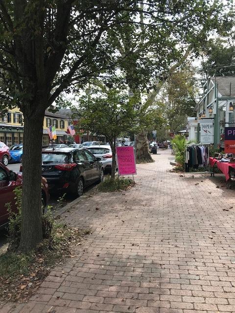 日帰りも出来る可愛らしい小さな街ニューホープで街歩き_d0269832_22040545.jpeg
