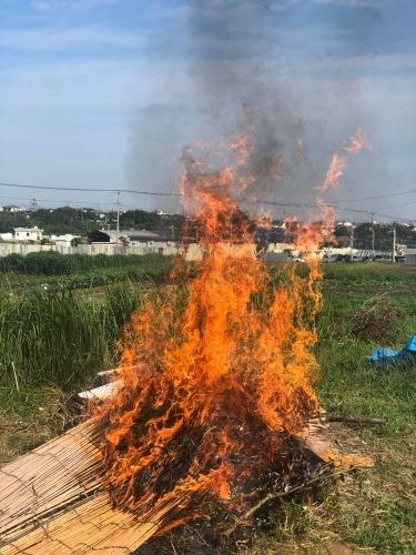 夏野菜&葦簀一緒に燃やしたら 凄い炎になってびっくり よく燃えるんですね!_c0222448_11530898.jpg