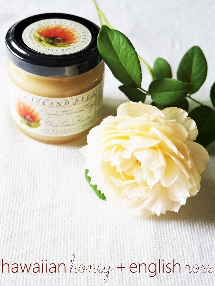 レフア蜂蜜と白いイングリッシュローズ_a0147281_16585289.jpg