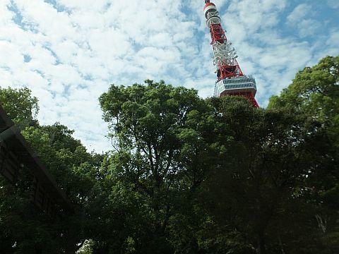 埼玉から都内へ_e0146484_18143831.jpg