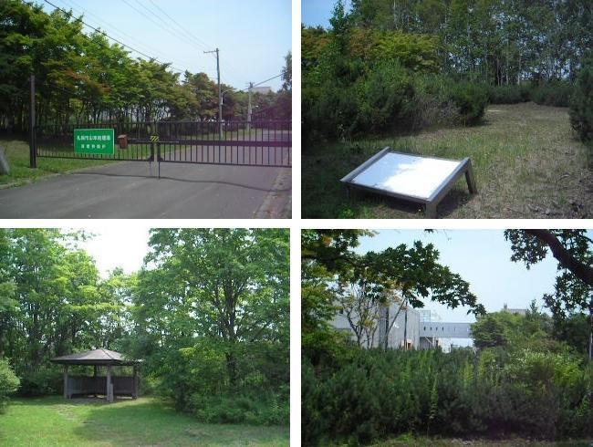厚別山本公園を歩く_f0078286_08240155.jpg