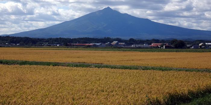 岩木山からの眺めの中に見える風車など_a0136293_15450573.jpg