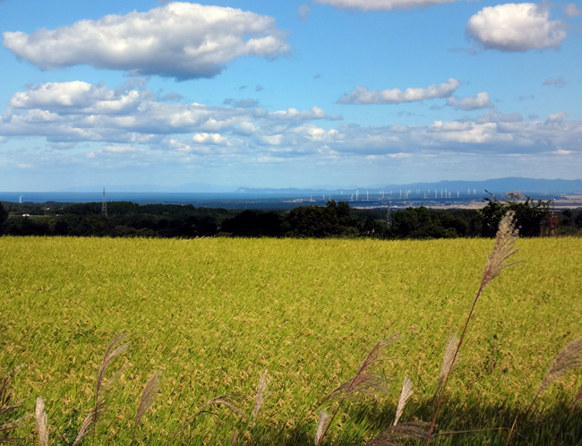 岩木山からの眺めの中に見える風車など_a0136293_15485485.jpg