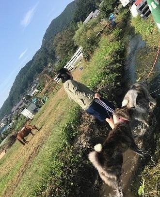 曼珠沙華まつりと川遊び♪_f0242002_10575671.jpg