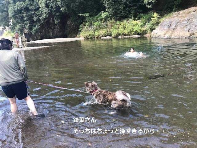 曼珠沙華まつりと川遊び♪_f0242002_11111323.jpg